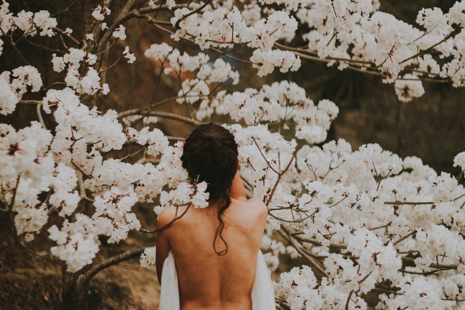 Cherry Blossom spuiten